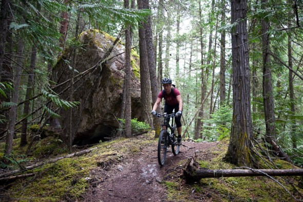 Lush forest and singletrack (between Kinney and upper valley)