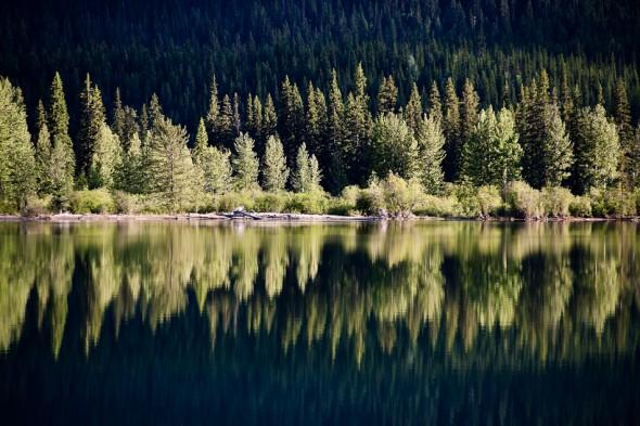 Moose Lake reflection, Mt Robson