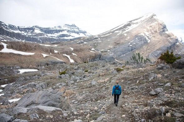 Nigel Pass, Icefields Parkway