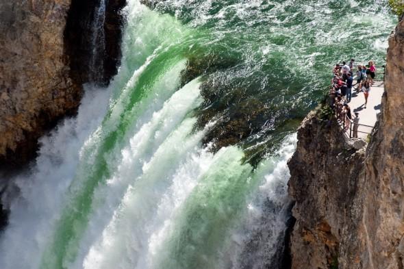 Yellowstone Falls - Grand Canyon of Yellowstone National Park