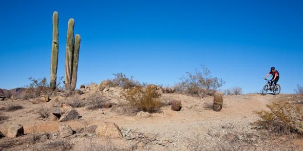 We've been on the epic singletrack fix since hitting Arizona.