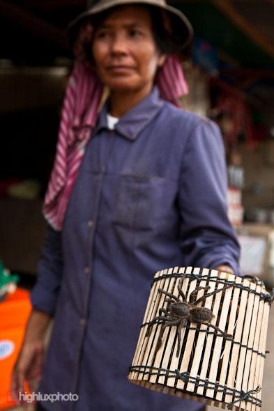 Phnom Penh – Battambang, Highlux Photography