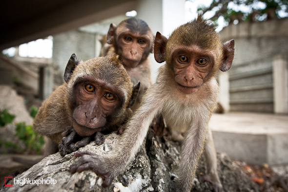 Kanchanaburi – Chumpon, Highlux Photography