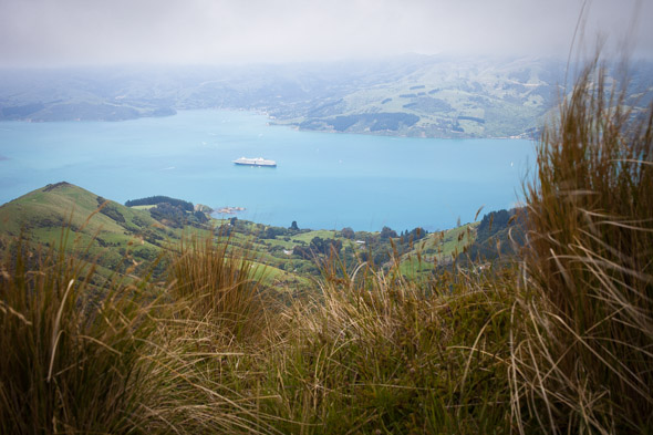 Since the Christchurch earthquakes damaged the Lyttelton wharfs cruise ships have anchored in Akaroa Harbour instead.
