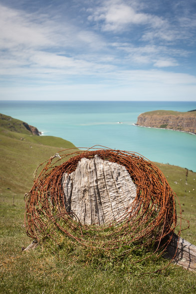 The ubiquitous 'Banks Peninsula bale of wire on a tree stump'.