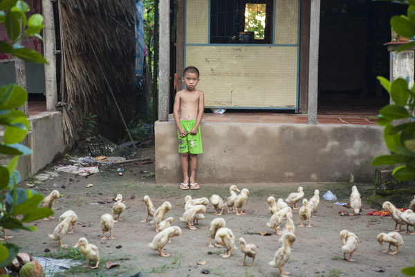 Boy with Ducklings