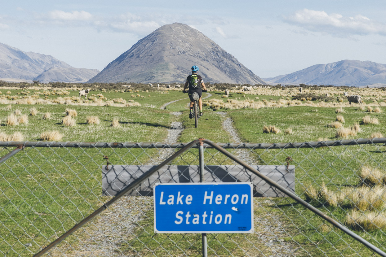 Leaving Glenfalloch Station and entering Lake Heron Station. Another remnant of the last ice age; the Sugarloaf, fills the view as we ride towards Lake Heron.
