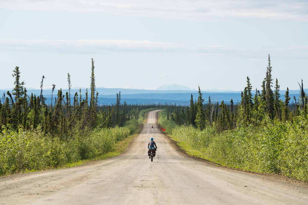 From Finger Mountain the road rolls gently on a downward course towards the Yukon River, seemingly endless boreal forest either side. We have to remind ourselves that this is the only road for thousands of kilometres, the rest is simply wilderness.