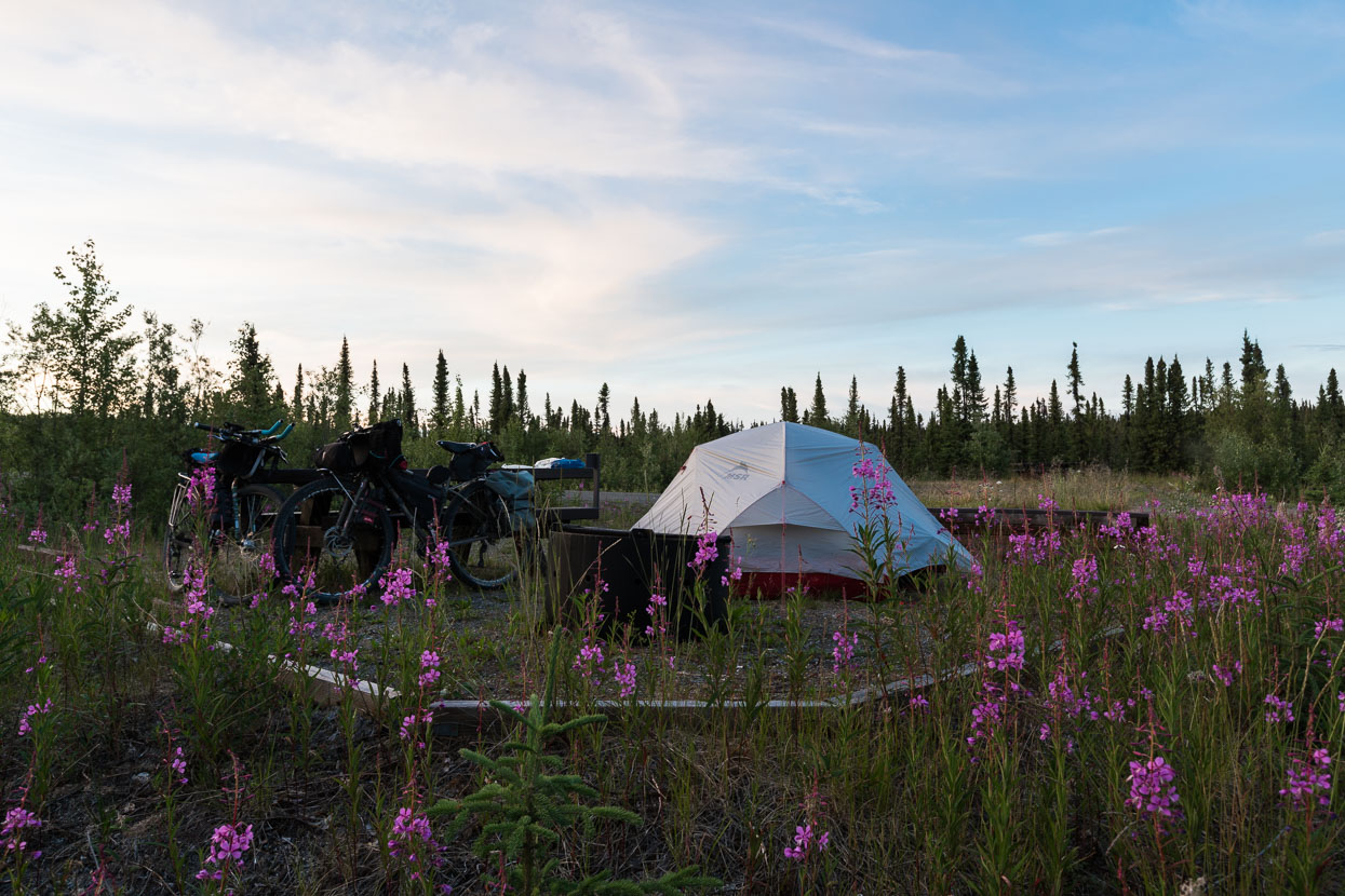 The day ended after 132km at Sourdough Camp, a basic BLM campsite. A great stop for the eveing with both the fireweed and the sun out.