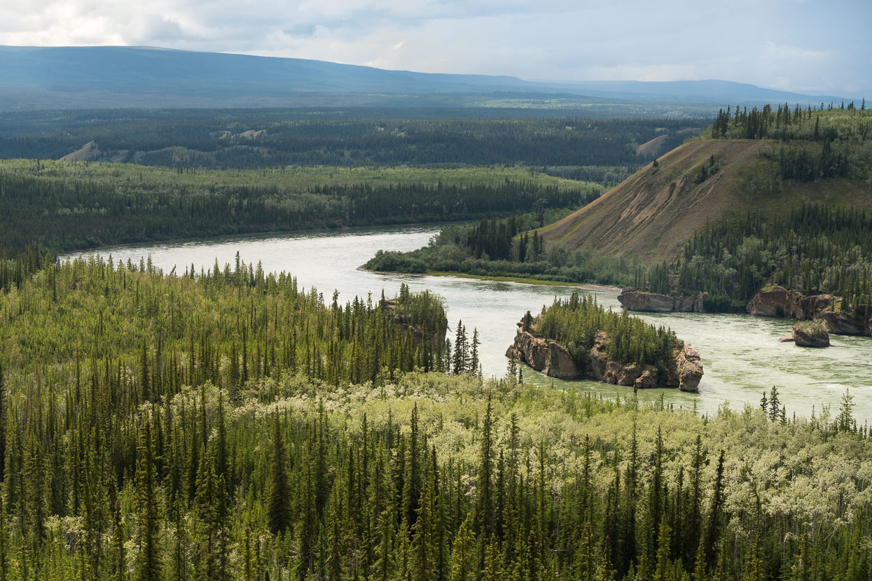 Between Pelly Crossing and Carmacks the Klondike Highway nears the Yukon River for time. This section, Five Finger Rapids is referred to in Jack London's 'Call of the Wild'.