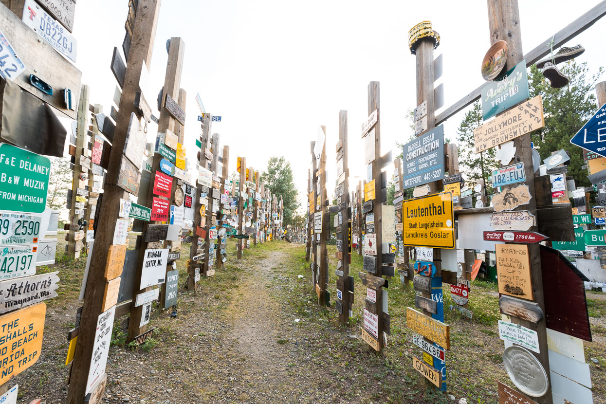 Watson Lake is famous for its sign forest, containing thousands upon thousands of signs from all over the world, with people contributing their own home made ones daily during the summer.