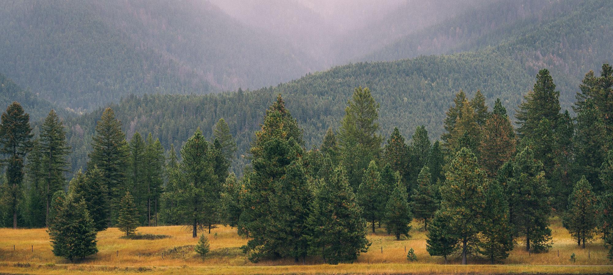 Great Divide Montana: Eureka – Helena