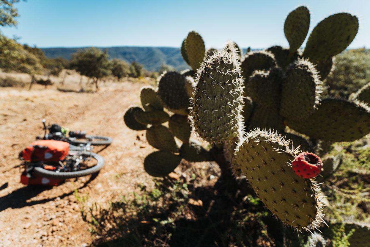 Mexico: Durango – Zacatecas, Highlux Photography