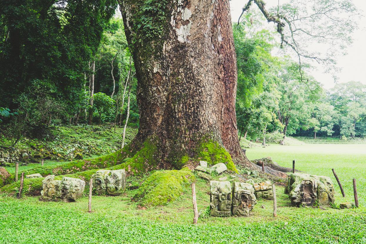 Antigua – Copan, Honduras, Highlux Photography