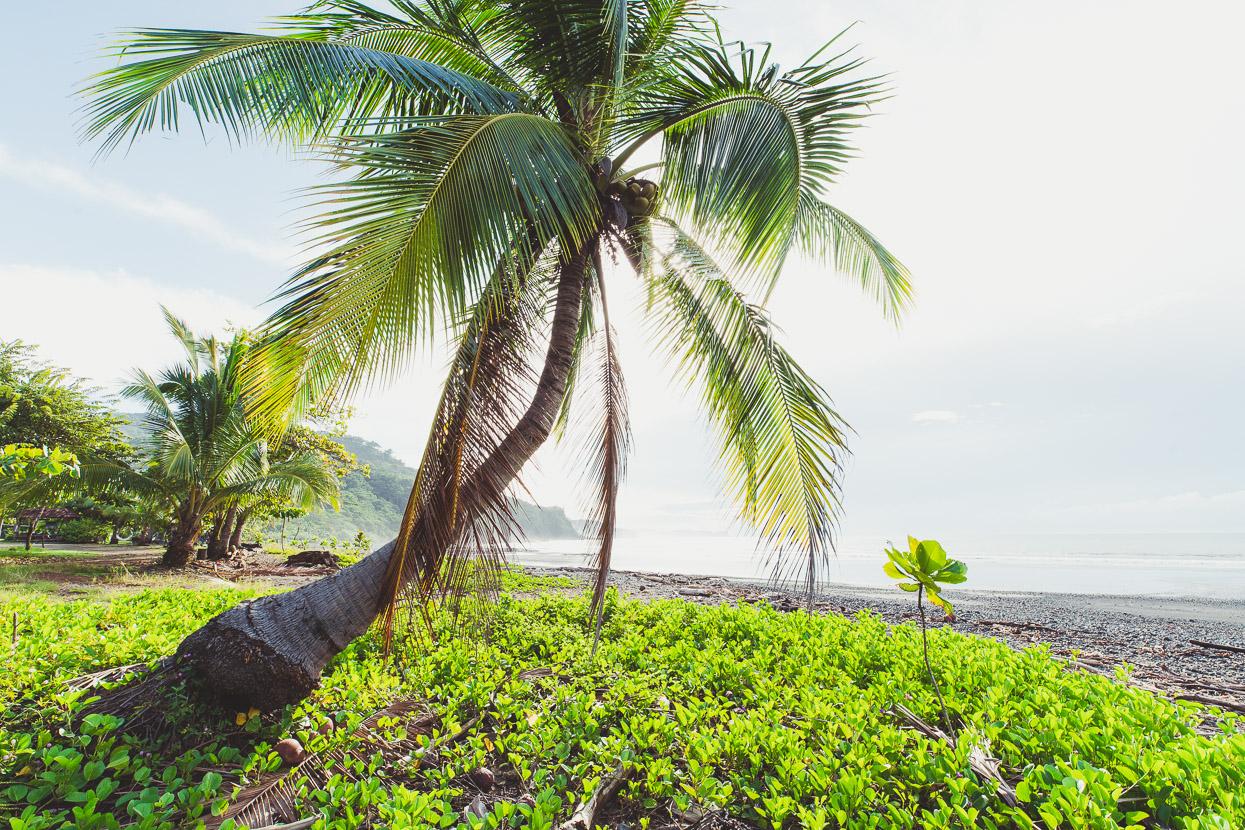 Costa Rica: The Nicoya Peninsula, Highlux Photography