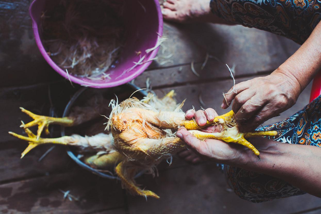Colombia: La Macarena – Algeciras, Highlux Photography