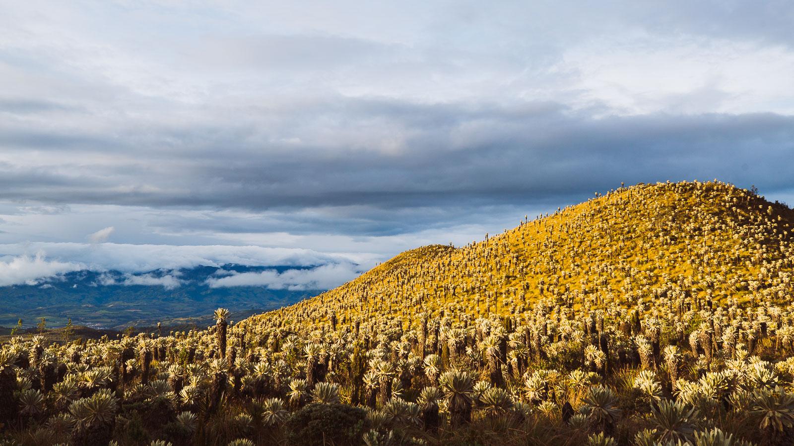 Ecuador: Tulcan – Otavalo