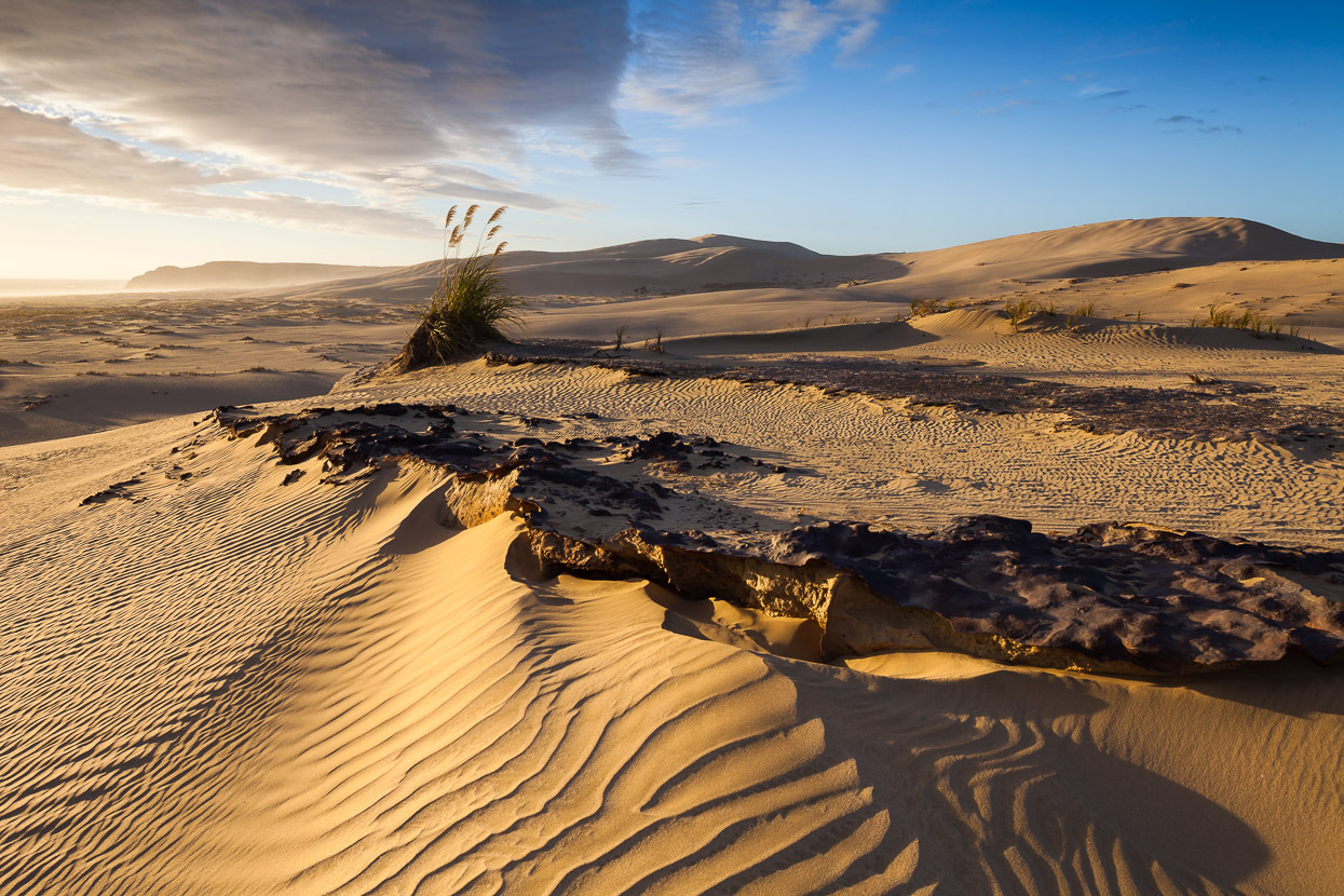 new zealand stock photo te paki sand dunes mark watson