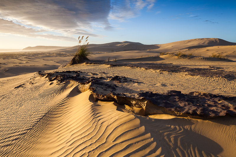 Ironstone and sand dunes, Te Paki Recreation Reserve, Northland