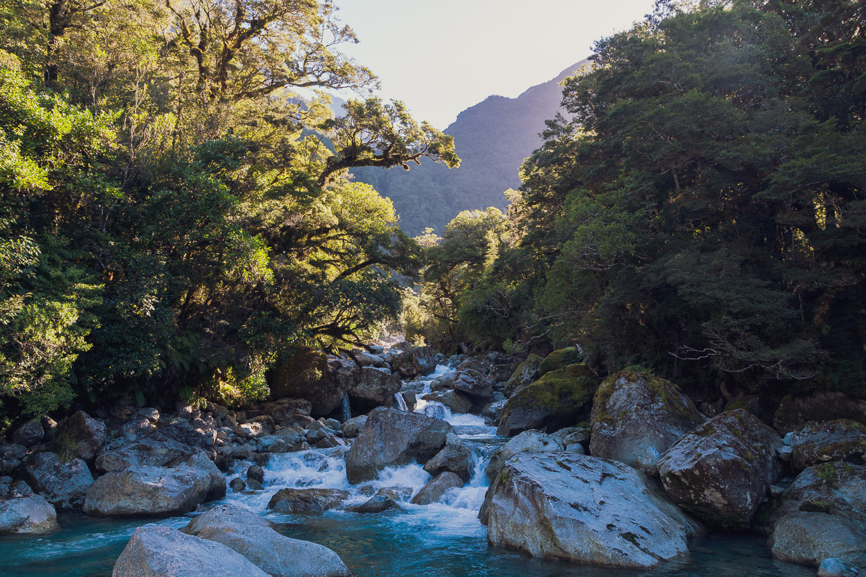 Darran Mountains, Fiordland: A Traverse from the Lower Hollyford Valley to the Cleddau Valley via Turners Eyrie, Highlux Photography
